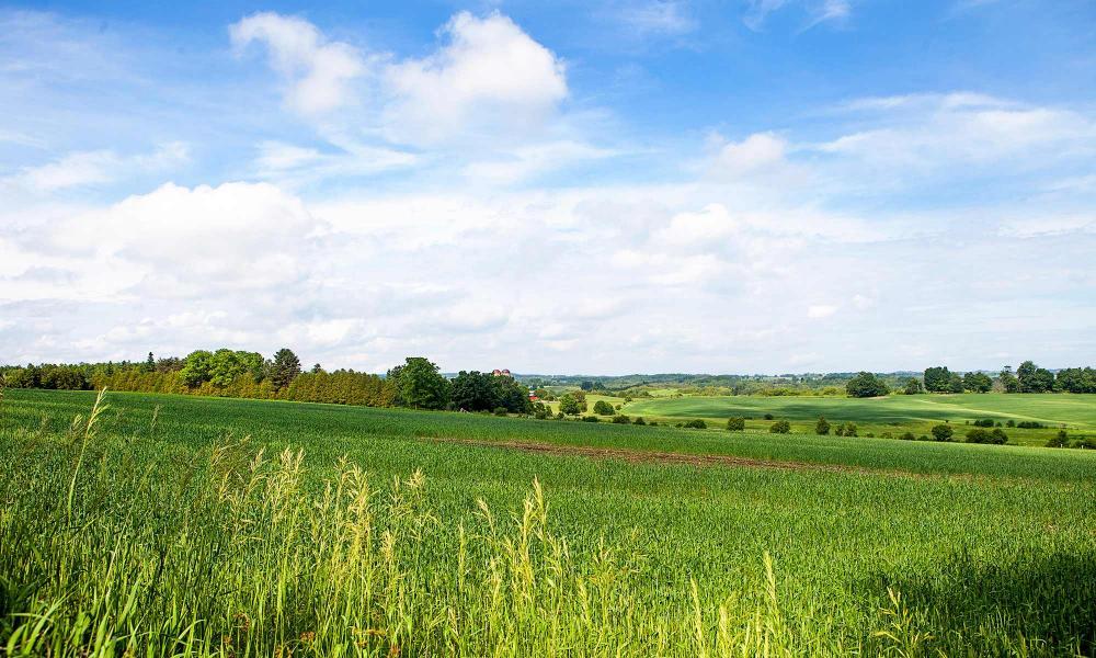 Cu cât se vând terenurile la Cluj? Cele mai scumpe, în viitoarele cartiere ale oraşului