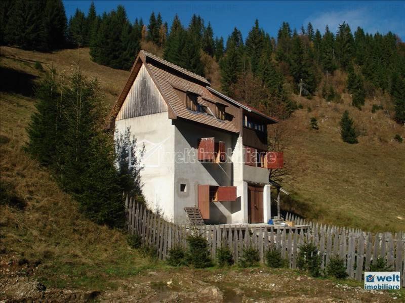 Vrei o casă de vacanţă sau o cabană la munte, în Cluj? VEZI oferte până în 50.000 euro
