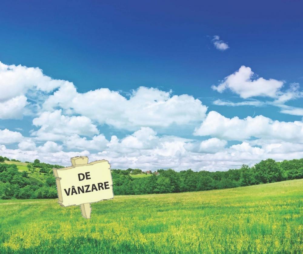 Amnistie fiscală pentru dezvoltatorii imobiliari persoane fizice. Cu cât se vând terenurile la Cluj