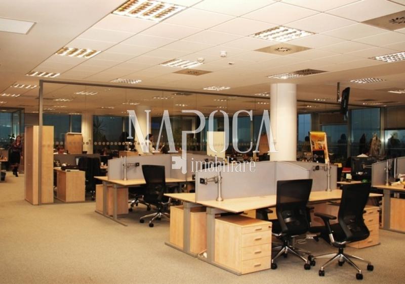 TOP 10 cele mai scumpe spaţii de birouri de vânzare/închiriat în Cluj. Vezi ce se caută şi tarifele pe cartiere