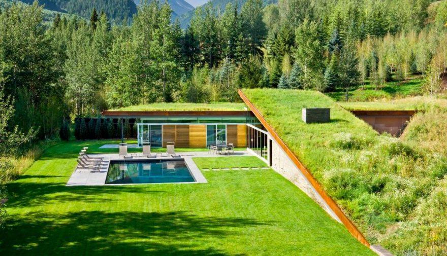 Jungla urbană. Cât te costă un acoperiş verde şi care sunt avantajele pentru mediu şi casă VIDEO