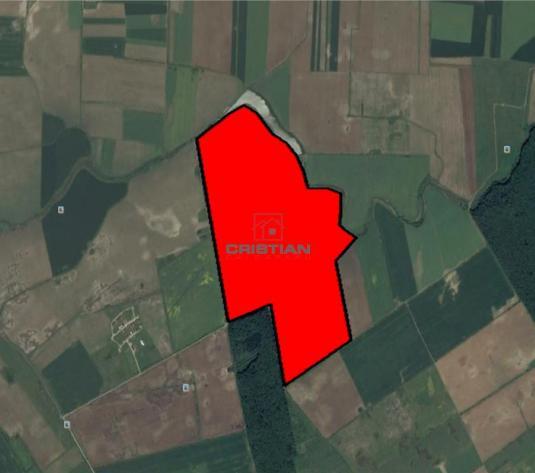 Vanzare teren Corbeanca  Balotesti  DN1, Ilfov - imagine 1