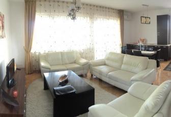 Apartament 4 camere, Andrei Muresanu