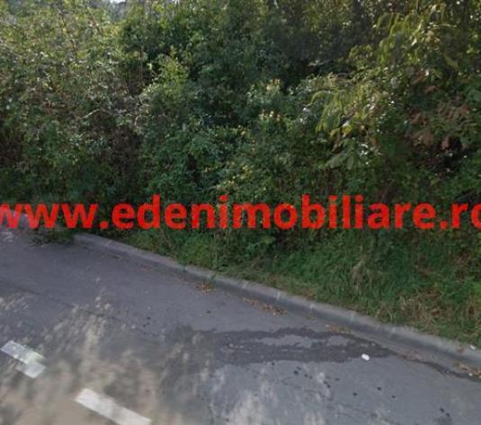 Teren de vanzare in Cluj, zona Zorilor, 630000 eur