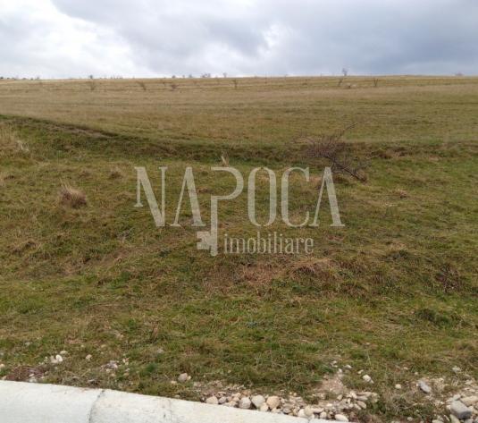 Teren intravilan pentru constructii de vanzare in Chinteni - imagine 1