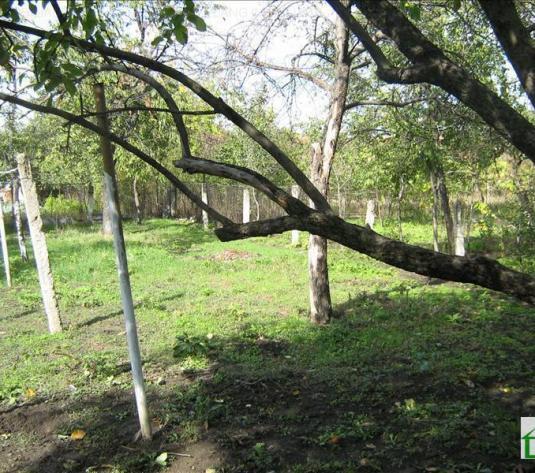Casă de închiriat, Zona Gradiste, Arad