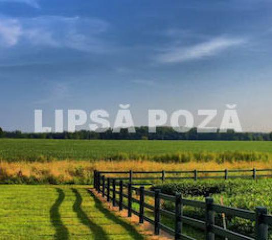Teren Ultra Central Botosani - imagine 1