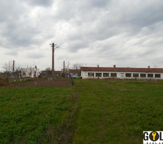 Vand ferma agricola, in Zimandul Nou (ID: 612)