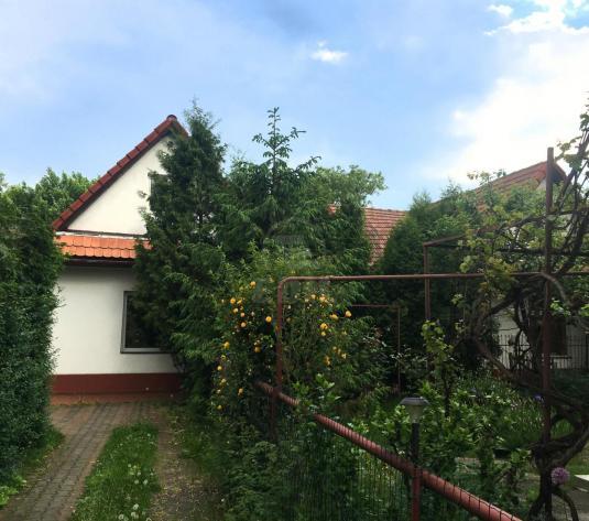 Case de vnzare 7 camere Cluj-Napoca, Grigorescu