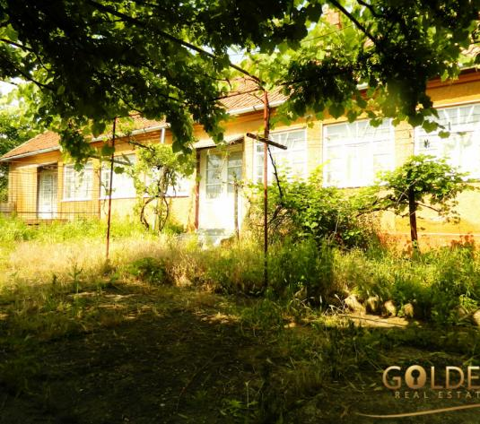 Vand casa cu 3 camere, localitatea Macea, suprafata teren 3000 mp (ID: 1031)