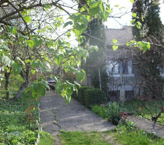 Casa veche cu 700 mp teren, cartierul Andrei Muresanu