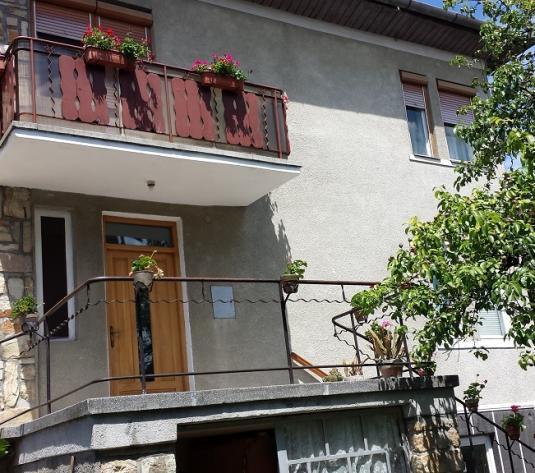 Casa individuala, cartierul Grigorescu