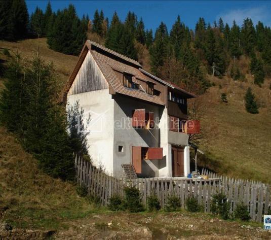 Vanzare casa familiala, zona Muntele Baisorii