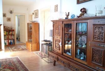 Apartament cu gradina la vila in Andrei Muresanu