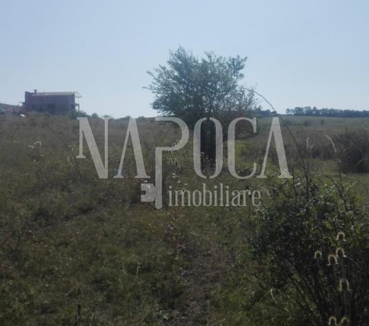 Teren extravilan pentru constructii de vanzare in Borhanci, Cluj Napoca