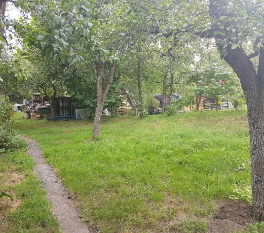 Teren 920 mp, strada Ceahlau, cartierul Zorilor