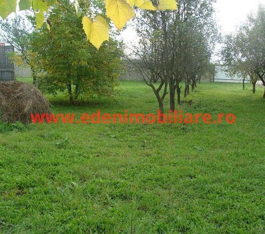 Teren de vanzare in Cluj, zona Jucu de Sus, 125000 eur
