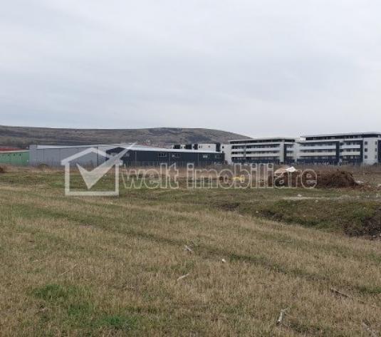 Teren de vanzare pentru hala in parc industrial, 11.608 mp, Sannicoara, Apahida