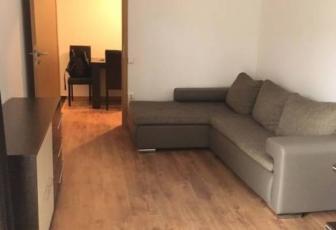 Apartament 2 camere, mobilat si utilat, zona UMF