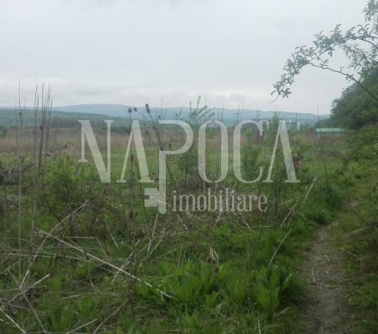 Teren intravilan pentru constructii de vanzare in Sopor, Cluj Napoca - imagine 1