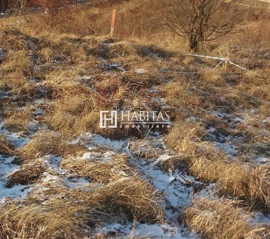Vanzare teren 1050 mp in Borhanci