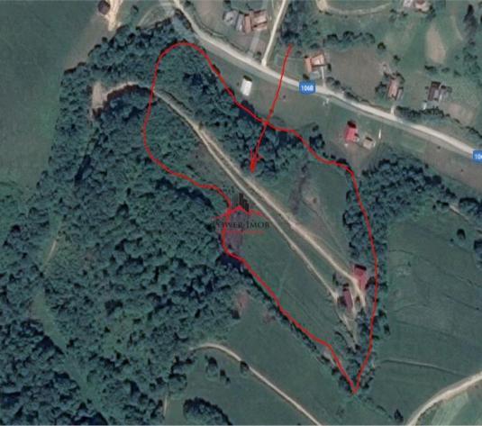 Casa,teren si padure in Holbav, Brasov.