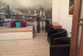 Apartament de inchiriat, 1 camera, Zona Iulius Mall