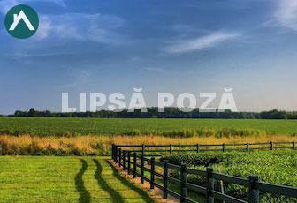Vand 2 terenuri cu autorizație de construcție in Dezmir de 450 mp