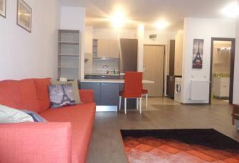 Apartament 2 camere ultrafinisat Platinia