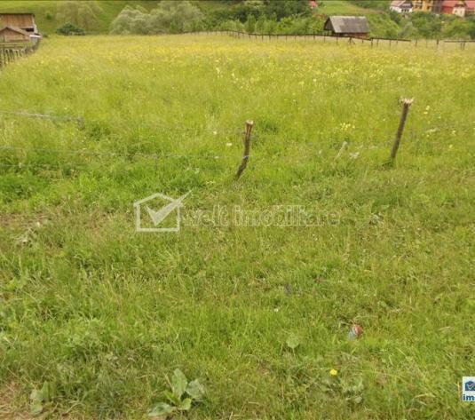 Vanzare teren situat in Floresti, zona Magnoliei