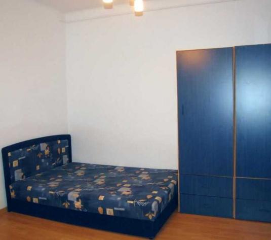 Vanzare apartament 1 camera Central zona Politiei - imagine 1