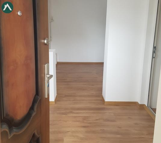 DRISTOR-DUDESTI, 2 camere la curte, 55000euro - imagine 1