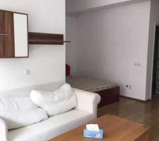 Vanzare apartament 1 camera in Manastur zona strazii Edgar Quinet - imagine 1
