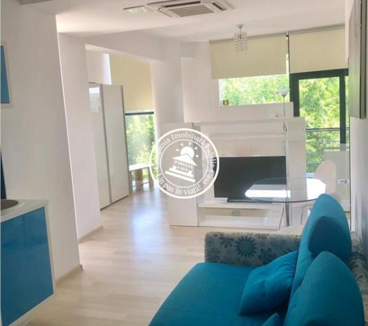 Apartament 1 camera  de inchiriat  Copou,400 EUR - imagine 1