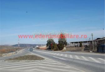 Teren de vanzare in Cluj, zona Apahida, 55 eur