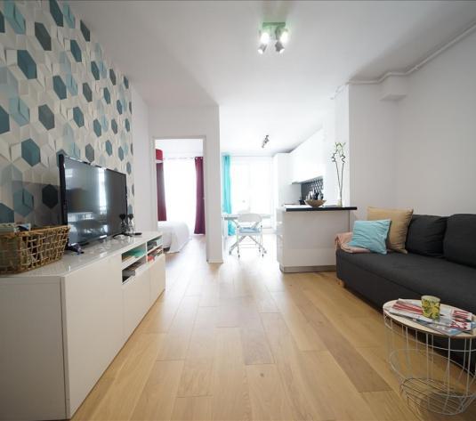 Apartament 2 camere +garaj de inchiriat, Zona Iulius Mall - imagine 1