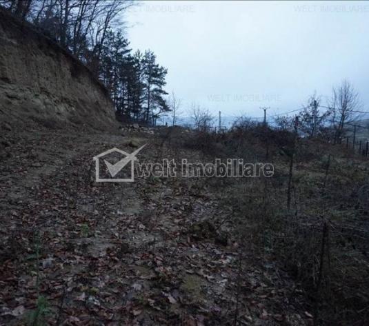 Vanzare teren 2000 mp, situat in Floresti, zona Tautiului