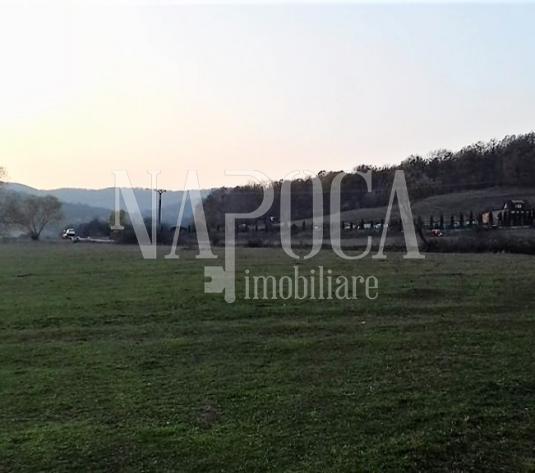 Teren extravilan agricol de vanzare in Gilau Vest, Gilau - imagine 1
