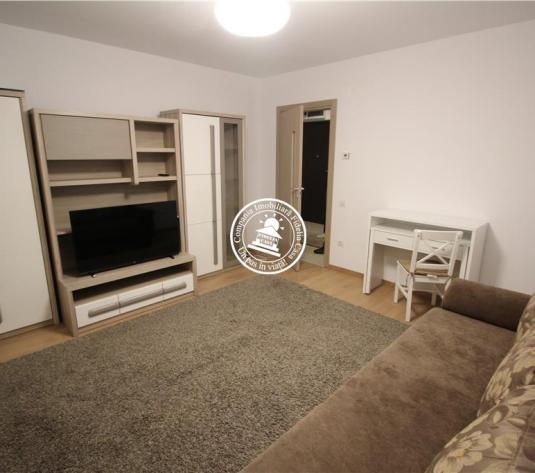 Apartamente 1 camera 1 camere de inchiriat Pacurari - imagine 1