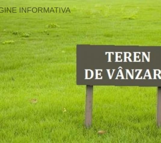 Teren Extravilan 1000 Mp, Zona Catamarasti Deal - imagine 1