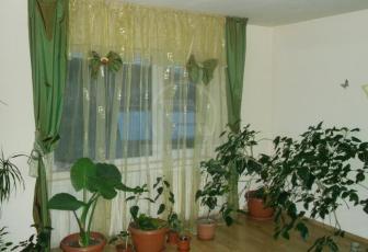 Case de vânzare 6 camere Cluj-Napoca, Zorilor