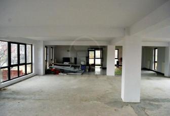 Birouri de vânzare 12 incaperi Cluj-Napoca, Iris