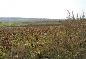 Vanzare teren in zona Soporului