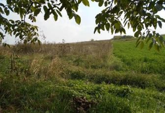 Vanzare teren intravilan pe drumul Soporului