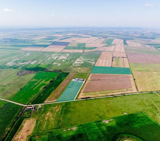 Teren in zona industriala Pecica 13,4 hectare. - imagine 1